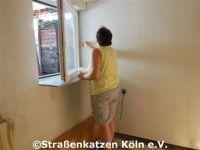 renovierung_datsche_1_4