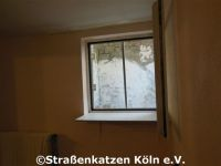 renovierung_datsche_2_17