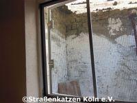renovierung_datsche_2_18