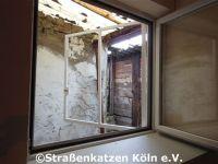 renovierung_datsche_2_5