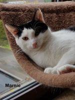 Marnie2